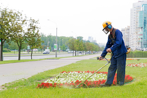 The Woodlands/Conroe Landscaping Services